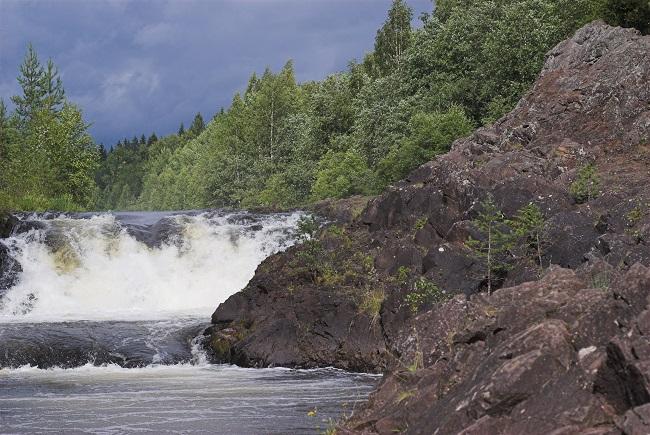 Водопад Кивач – от Белой реки до Белого моря – проект Заповедный лес